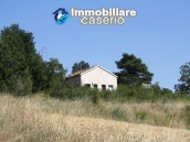 Country house with land in Salcito 4