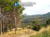 Farmhouse to renovate with 10 acres for sale in Carpineto Sinello, Abruzzo 16