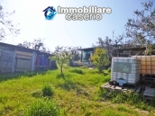 Country house for sale with land in Montenero di Bisaccia, Campobasso, Molise 3