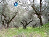 Stone country house with land for sale in Schiavi di Abruzzo, Italy 24