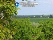 Country house for sale with land in Marina di Chieuti, Foggia, Puglia 18