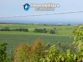 Country house for sale with land in Marina di Chieuti, Foggia, Puglia 19
