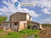 Country house for sale with land in Marina di Chieuti, Foggia, Puglia 4