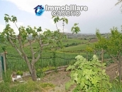 Country house for sale in Montenero di Bisaccia, Molise 24