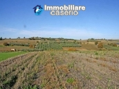 Building land with sea view for sale in Montenero di Bisaccia, Molise, Italy  5