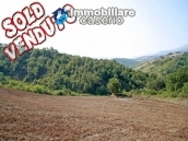 Ruin for sale with three hectares of land in Guilmi, Abruzzo 1