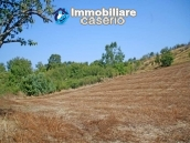 Ruin for sale with three hectares of land in Guilmi, Abruzzo 4