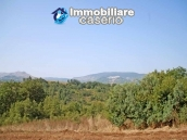 Ruin for sale with three hectares of land in Guilmi, Abruzzo 6