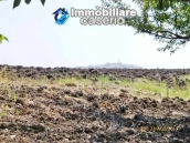 Detached house for sale with land in the country of Montenero di Bisaccia 10