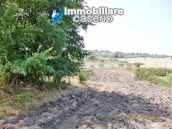 Detached house for sale with land in the country of Montenero di Bisaccia 9