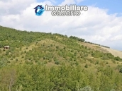 Two buildings with 20 hectares for sale in Gissi, Abruzzo 15