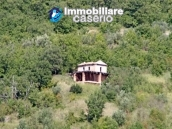 Two buildings with 20 hectares for sale in Gissi, Abruzzo 16