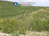 Two buildings with 20 hectares for sale in Gissi, Abruzzo 18