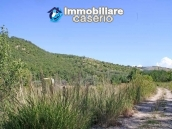 Two buildings with 20 hectares for sale in Gissi, Abruzzo 19