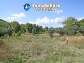 Two buildings with 20 hectares for sale in Gissi, Abruzzo 24
