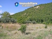 Two buildings with 20 hectares for sale in Gissi, Abruzzo 25