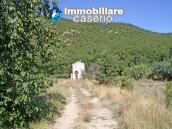 Two buildings with 20 hectares for sale in Gissi, Abruzzo 3