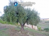 Stone cottage with lake view for sale in the Liscione Guardialfiera, Molise, Italy 10