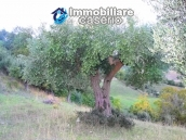 Stone cottage with lake view for sale in the Liscione Guardialfiera, Molise, Italy 21