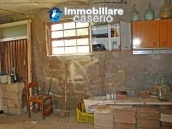 Cottage in the countryside with walnut trees for sale Atessa, Abruzzo 19
