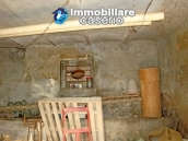 Cottage in the countryside with walnut trees for sale Atessa, Abruzzo 22