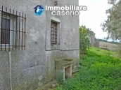 Cottage in the countryside with walnut trees for sale Atessa, Abruzzo 23