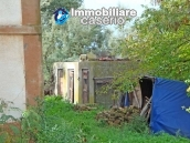Cottage in the countryside with walnut trees for sale Atessa, Abruzzo 24