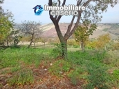Cottage in the countryside with walnut trees for sale Atessa, Abruzzo 25