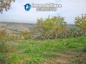 Cottage in the countryside with walnut trees for sale Atessa, Abruzzo 26
