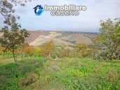 Cottage in the countryside with walnut trees for sale Atessa, Abruzzo 27