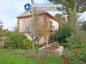 Cottage in the countryside with walnut trees for sale Atessa, Abruzzo 6
