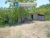 Cottage with land for sale in Casacalenda, Molise 22