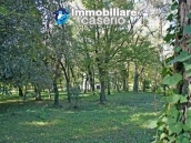 Farmhouse with land and lake for sale in Casoli, Chieti, Abruzzo 24