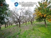 Habitable country house with land  and stone cottage for sale in Abruzzo, Italy 8