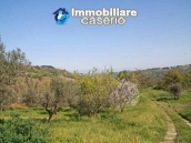 Country house with land for sale in Casalbordino, Chieti, Abruzzo  13