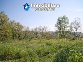 Country house with land for sale in Casalbordino, Chieti, Abruzzo  14