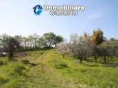 Country house with land for sale in Casalbordino, Chieti, Abruzzo  17