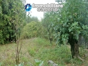 Big town house with land for sale in Casalanguida, Abruzzo 34