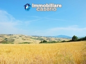 Rural house with land for sale in Atessa, Abruzzo 29