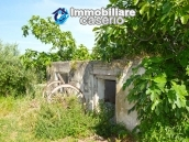 Rural house with land for sale in Atessa, Abruzzo 7