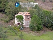 Country house with olive trees for sale near Campobasso, Molise 1
