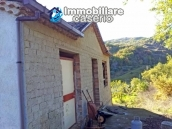 Country house with olive trees for sale near Campobasso, Molise 10