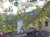 Country house with olive trees for sale near Campobasso, Molise 12