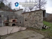 Country house with olive trees for sale near Campobasso, Molise 14