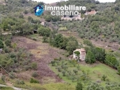 Country house with olive trees for sale near Campobasso, Molise 2