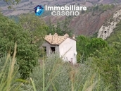 Country house with olive trees for sale near Campobasso, Molise 4