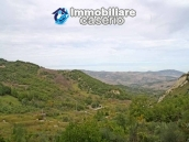 Country house with olive trees for sale near Campobasso, Molise 6