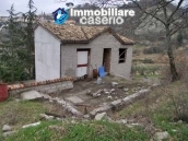 Country house with olive trees for sale near Campobasso, Molise 7