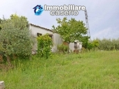 Country house with land and fruit trees for sale near the sea, Abruzzo 19