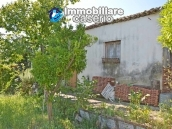 Country house with land and fruit trees for sale near the sea, Abruzzo 20